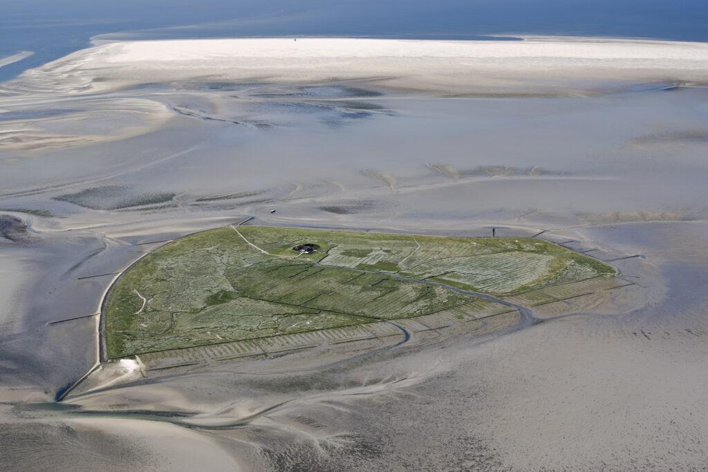 Wadden Sea - UNESCO World Heritage on our doorstep