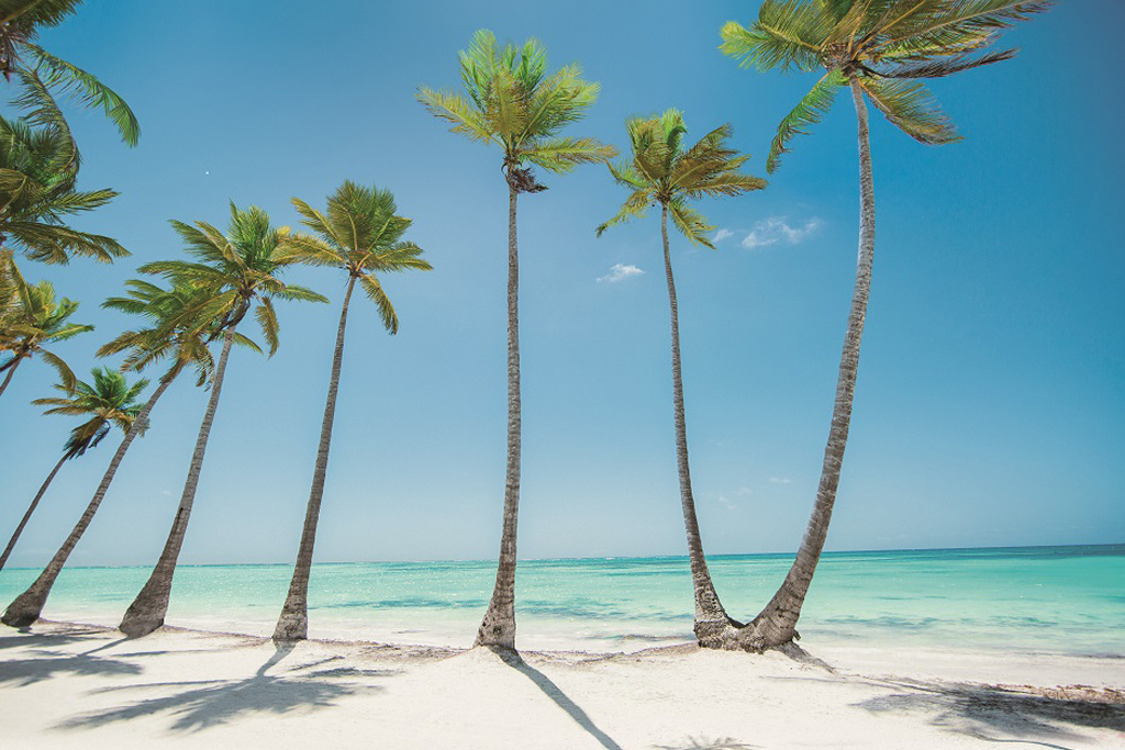 Dominican Republic simplifies travel with new electronic ticket portal