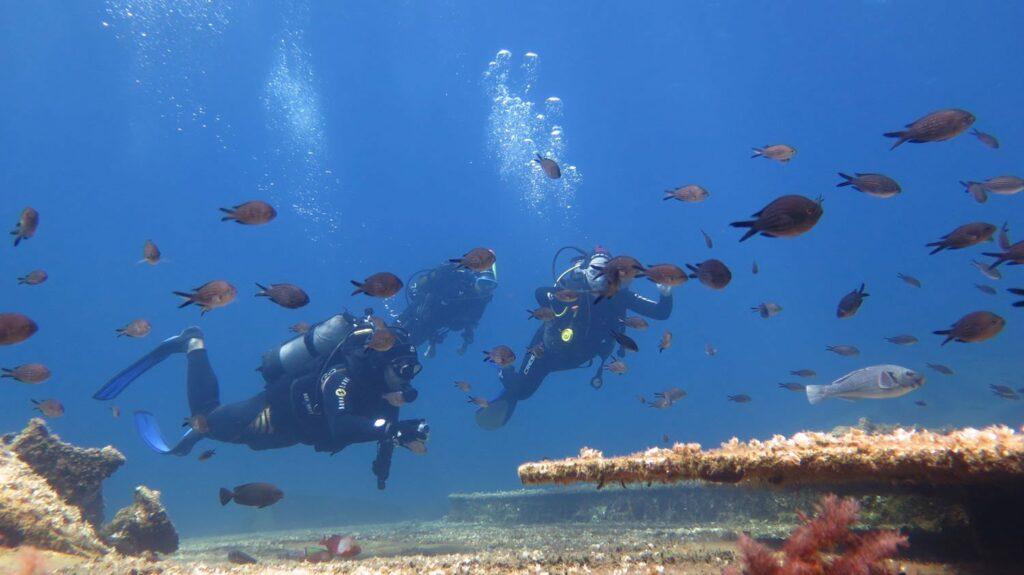 Diving is increasingly popular in Amorgos in Greece
