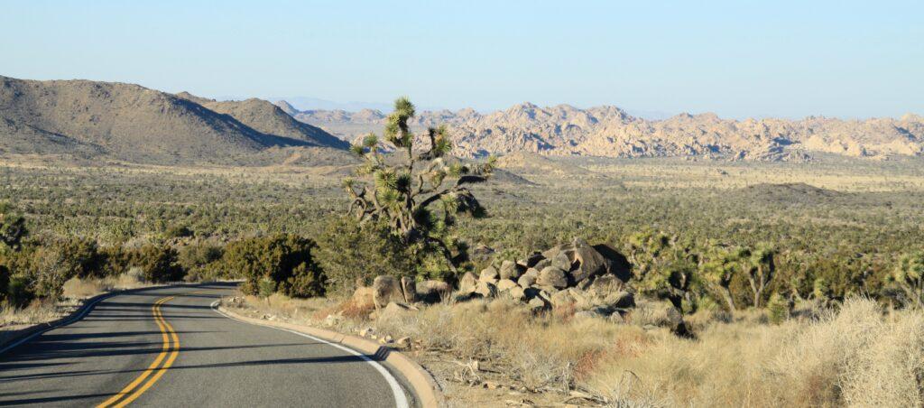 California road trips - Joshua Tree